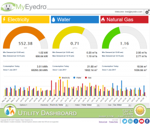 Screenshot of MyEyedro Utility Dashboard